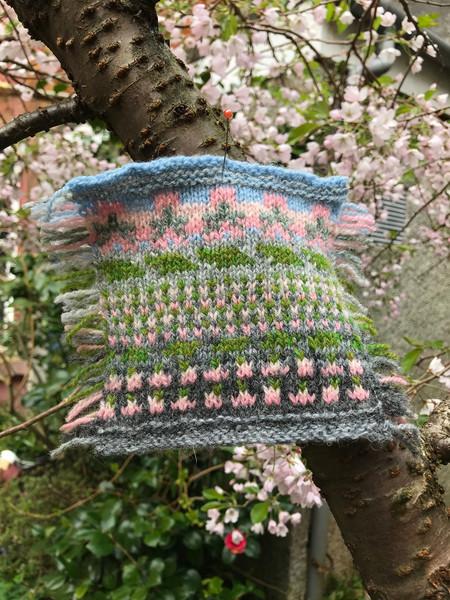 April 2020 Cherry blossom