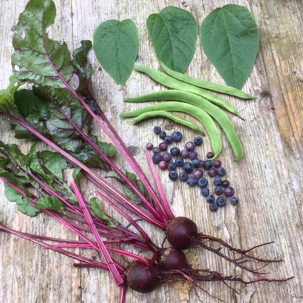 Garden produce inspiration