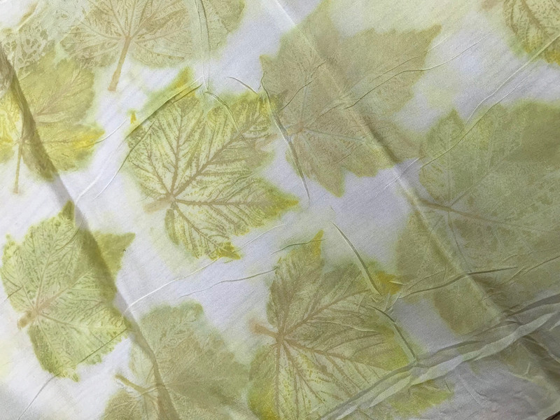Sycamore leaves on silk