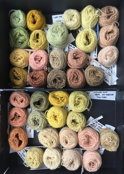 Icelandis=c tog and thel yarns dyed with a range of Icelandic plants