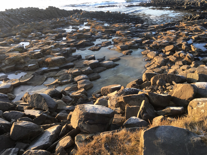 Basalt at Kalfshamarsvik