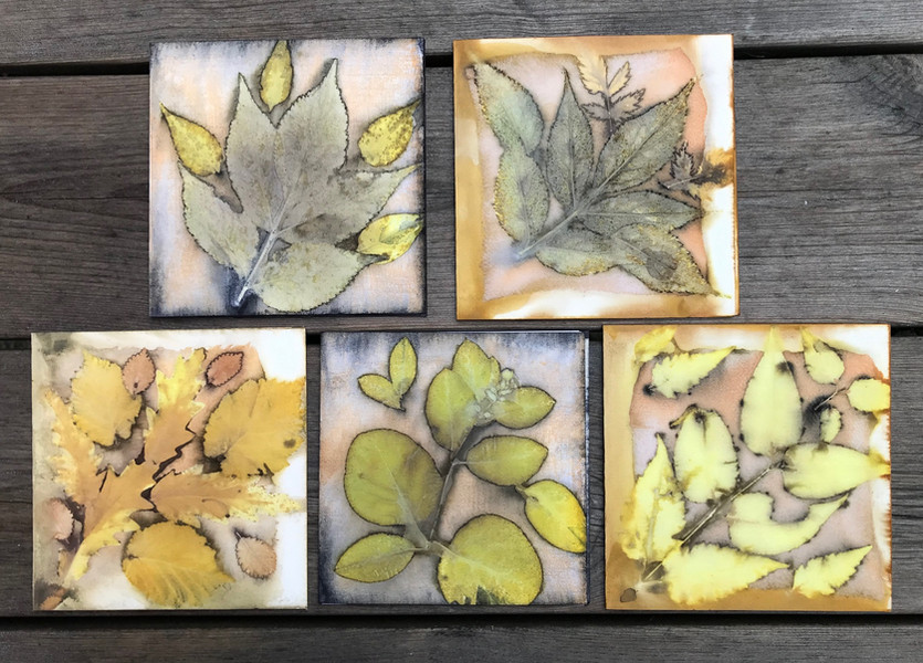 Ecoprint cards