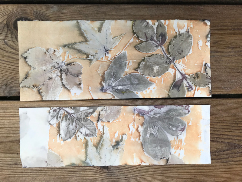 Ecoprinting on paper and fabric