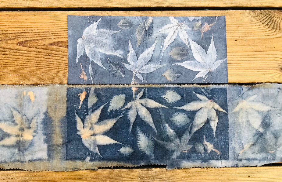 Acer leaves on paper (top) and linen