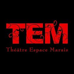 Logo du TEM