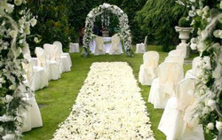 Ceremony Time