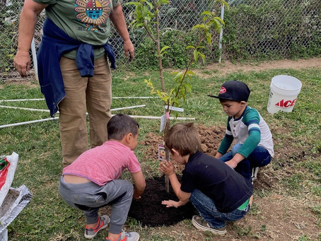 Earthday! Mom and Dad we planted trees!