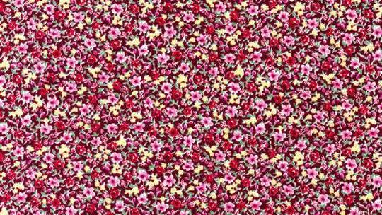 Robert Kaufman Fuchsia by Sevenberry Peitite Garden: SB-6116D3-3