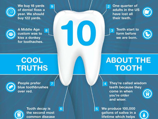 10 truths about the tooth