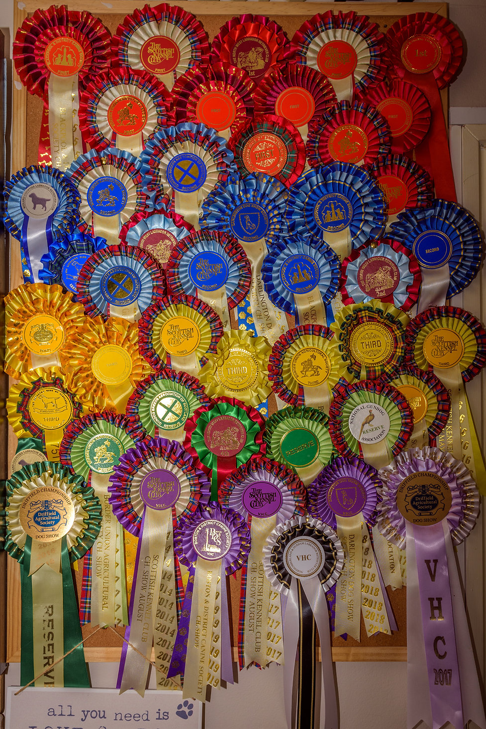 Bruadarach | Championship Rosettes.