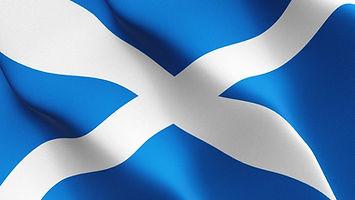 bruadarach Labradors | Scotland