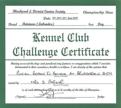 Blackpool  | Challenge Certificate