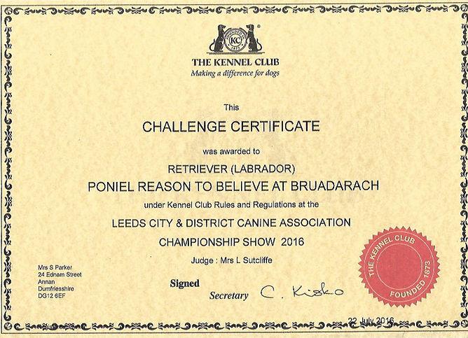 Bruadarach| Labradors | Brodie | Challenge Certicate.