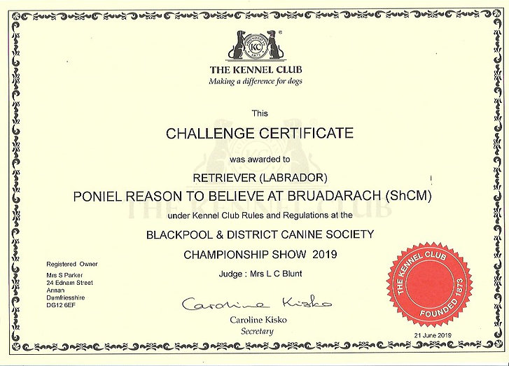 Challenge Certificate | Blackpool Poniel reason to Believe at Bruadarach.
