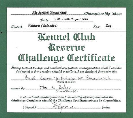 Reserve CC Scottsh Kennel Club.