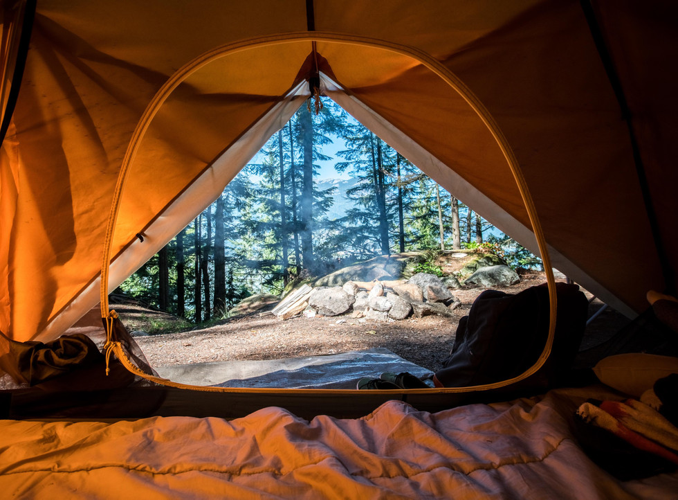 View-of-forest-from-inside-tent