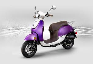 Honestar_Purple_1.jpg