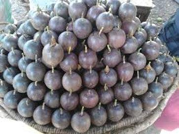 Original tropical passion fruits