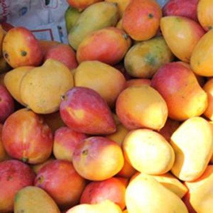 100% Organic Mangoes. 4 free samples