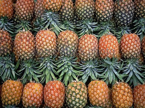 100% Organic Pineapples. 2 Free samples