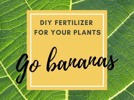 Go bananas! DIY fertilizer