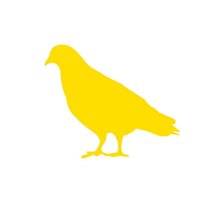 Donnie 5 Yellow.png