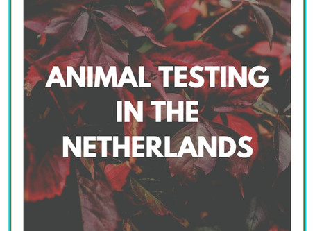 Animal testing in the Netherlands