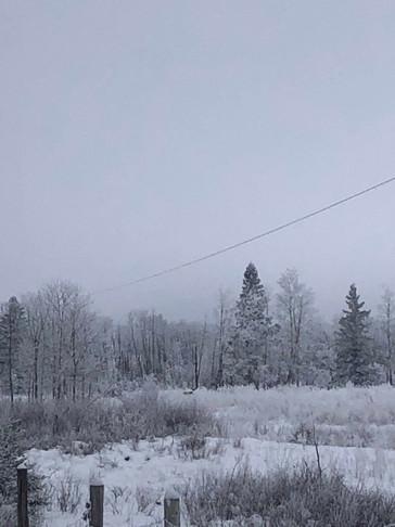 winter 2018 2.jpg