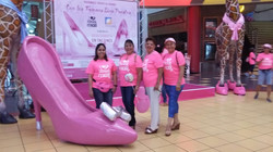 Campaña de la Cinta Rosada