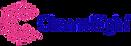 ChannelSight logo transparent.png