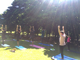 tree pose, vrskasana, Negishi Shinrin Park, morning yoga, park yoga