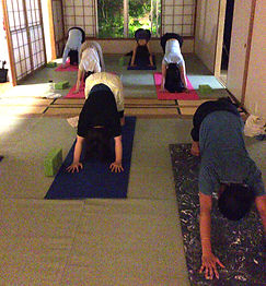 downward facing dog, power yoga, Yokohama yoga, yoga pose