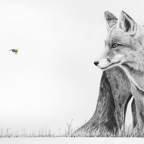 Fox and Bee flickr size.jpg