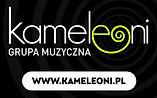 KAMELEONI 160x100 (SMALL).JPG
