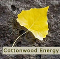 cottonwood e leaf logo - half size2.jpg