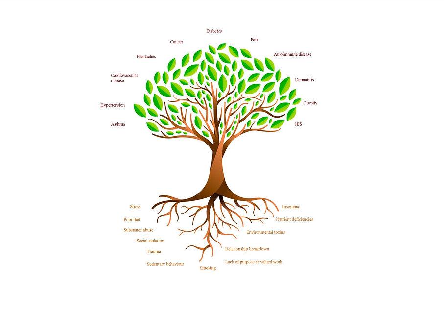 Final tree.jpg
