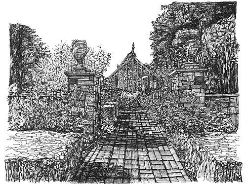 Chelsea Physic Gardens Print
