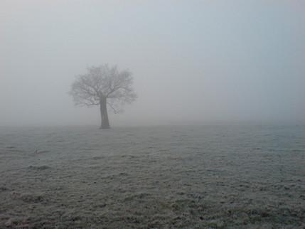 Mist (Kent, England).jpg