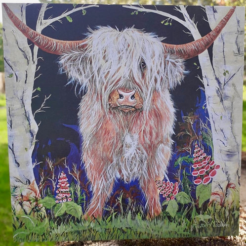 Brodie the Highland Cow Greeting Card