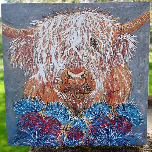 Sandy the Highland Cow Greeting Card