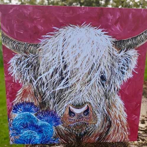 Rosie the Highland Cow Greeting Card
