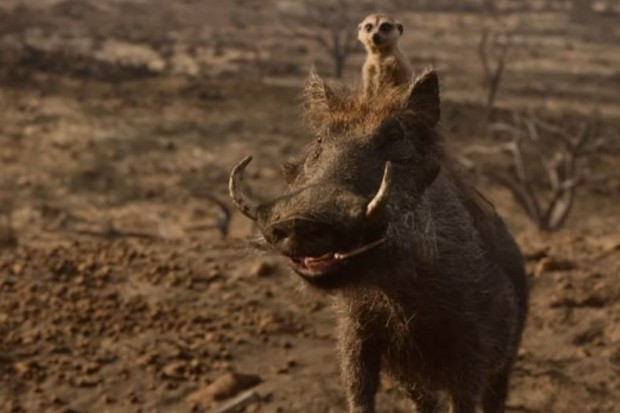 Timon and Pumbaa in The Lion King Live Action Remake. Photo Credit: Disney via Radio Times