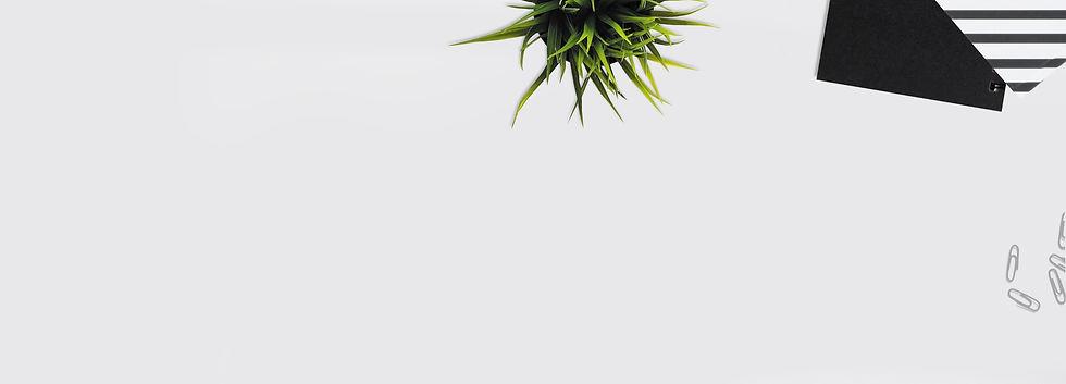 pexels-dominika-roseclay-1036808_edited_