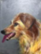 pet portrait vertical3.jpg