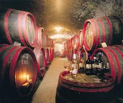 Wine cellar in Eger