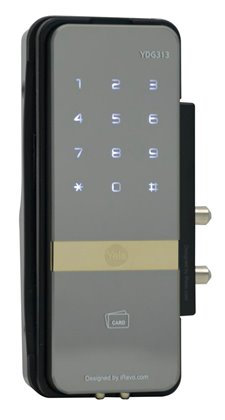YDG313