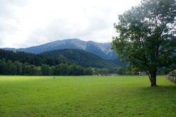 Sport Lusitanos Austria