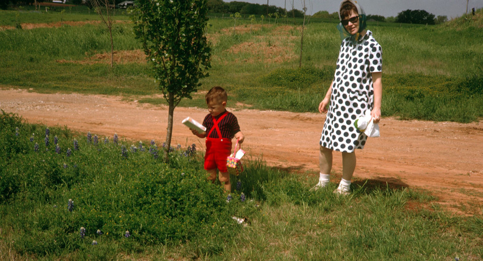 West rows in Buddy's orchard 50 years ago