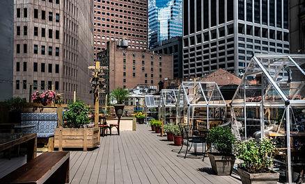 ampia-restaurant-rooftop-greenhouse-3.jp