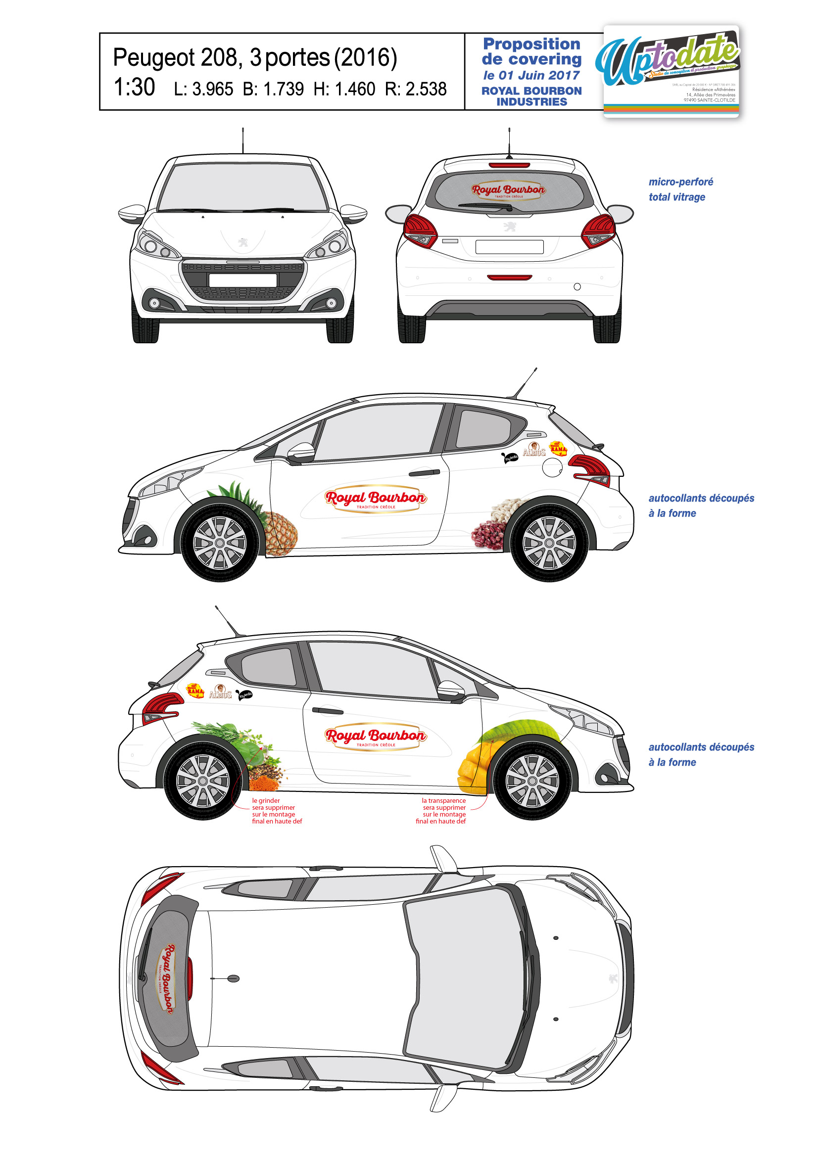Covering-9 Peugeot 208 [2016]-01
